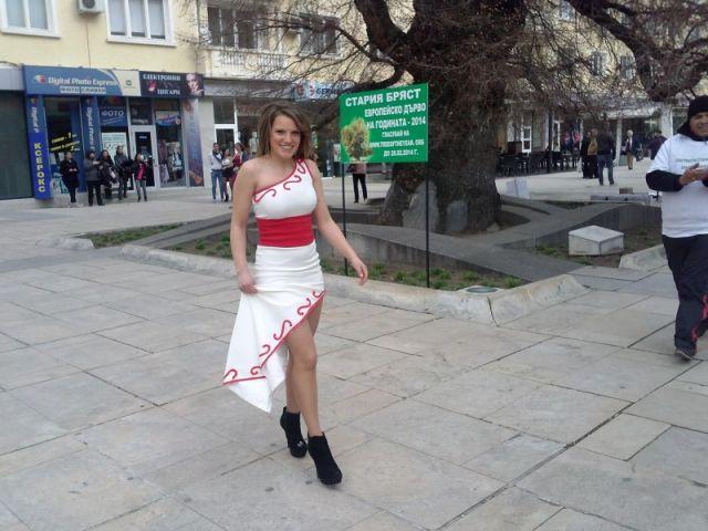 """""""Гласувай и подкрепи"""" по повод кандидатурата на Стария бряст за """"Европейско дърво на годината"""