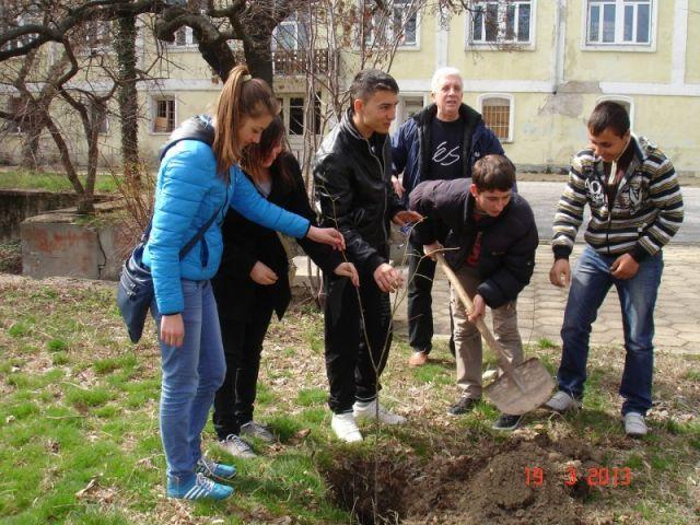 Озеленяване на училището